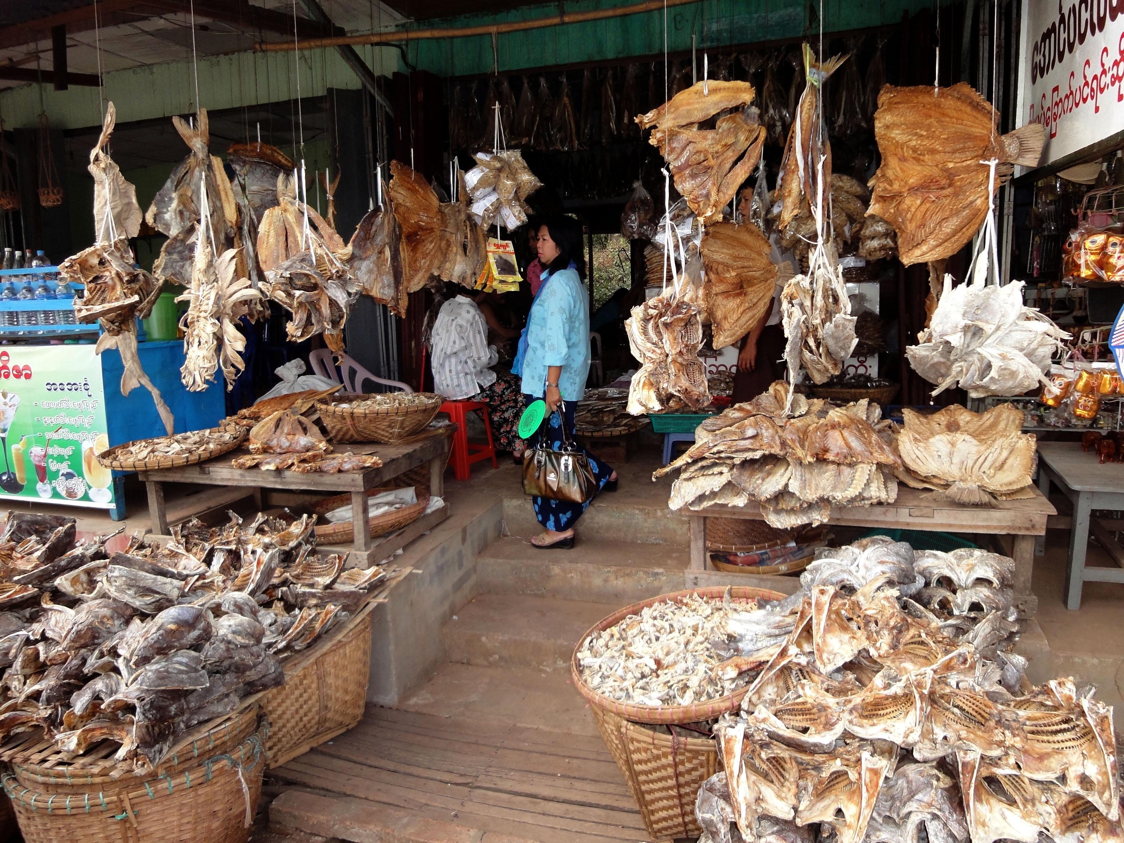 Thanlyin dryied fish markets Dec 2009 04