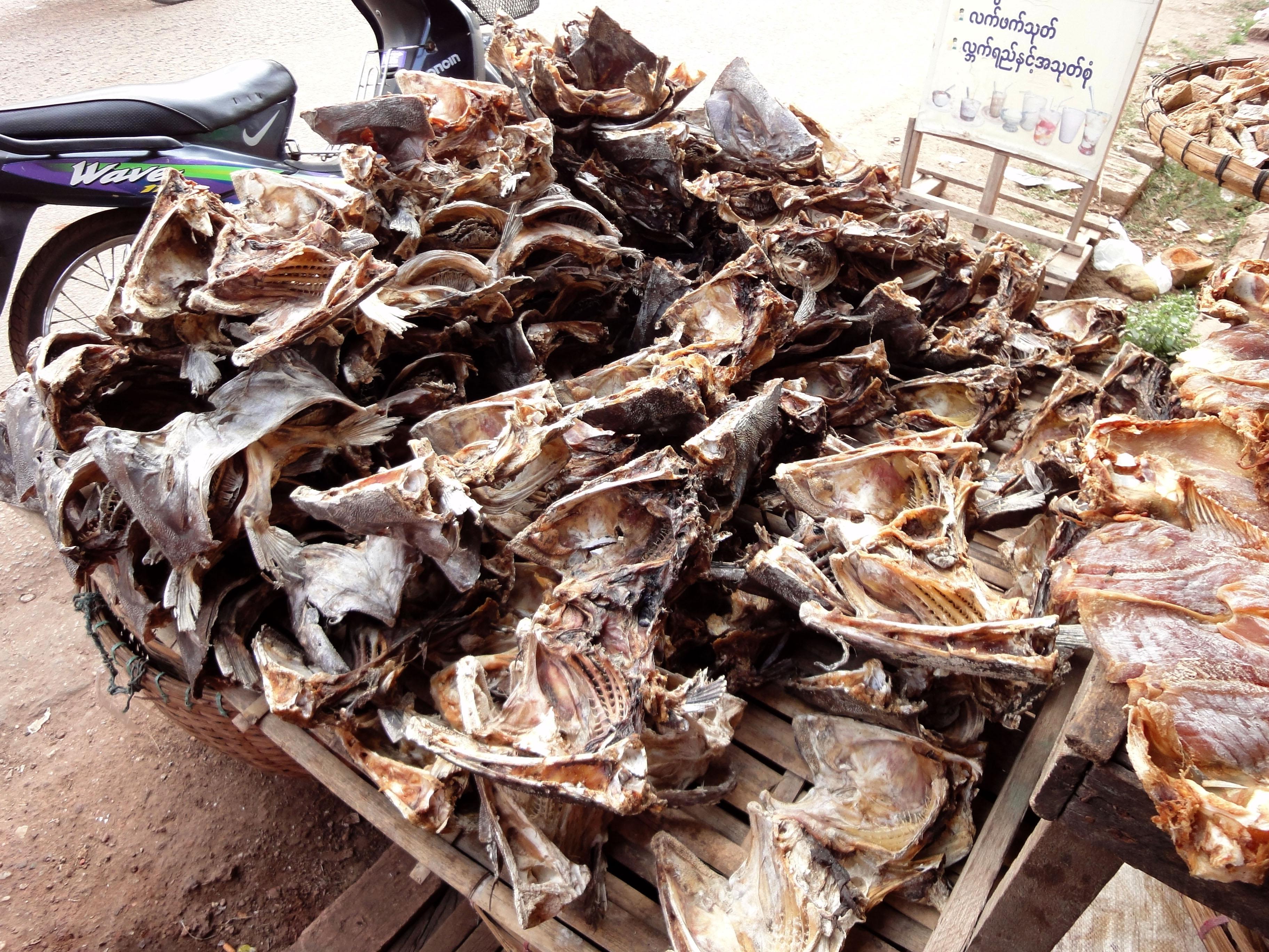 Thanlyin dryied fish markets Dec 2009 07
