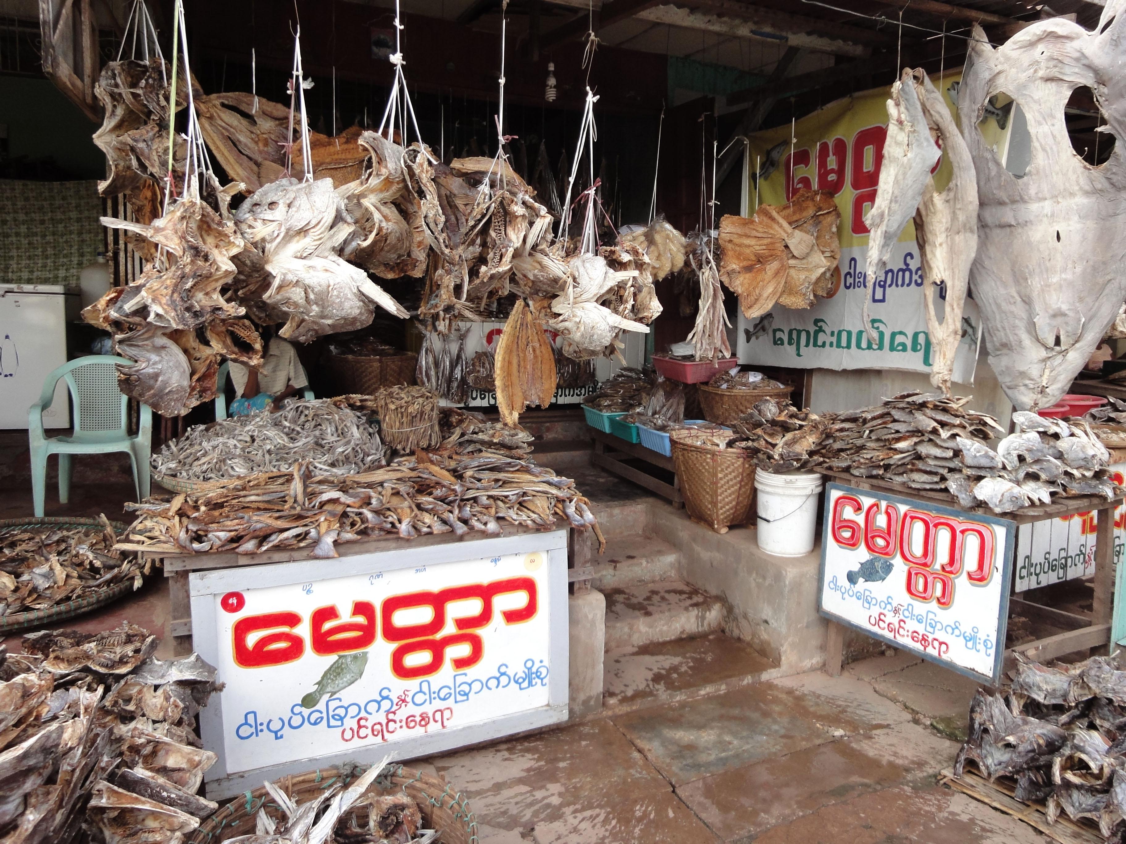 Thanlyin dryied fish markets Dec 2009 08
