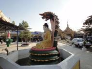 Asisbiz Meilamu Pagoda Nagar and Buddha Yangon Myanmar 01
