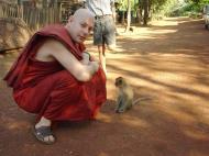 Asisbiz Martaban Bilin Kyaik Htit Saung Pagoda Monkeys Sep 2000 04