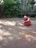 Asisbiz Martaban Bilin Kyaik Htit Saung Pagoda Monkeys Sep 2000 05