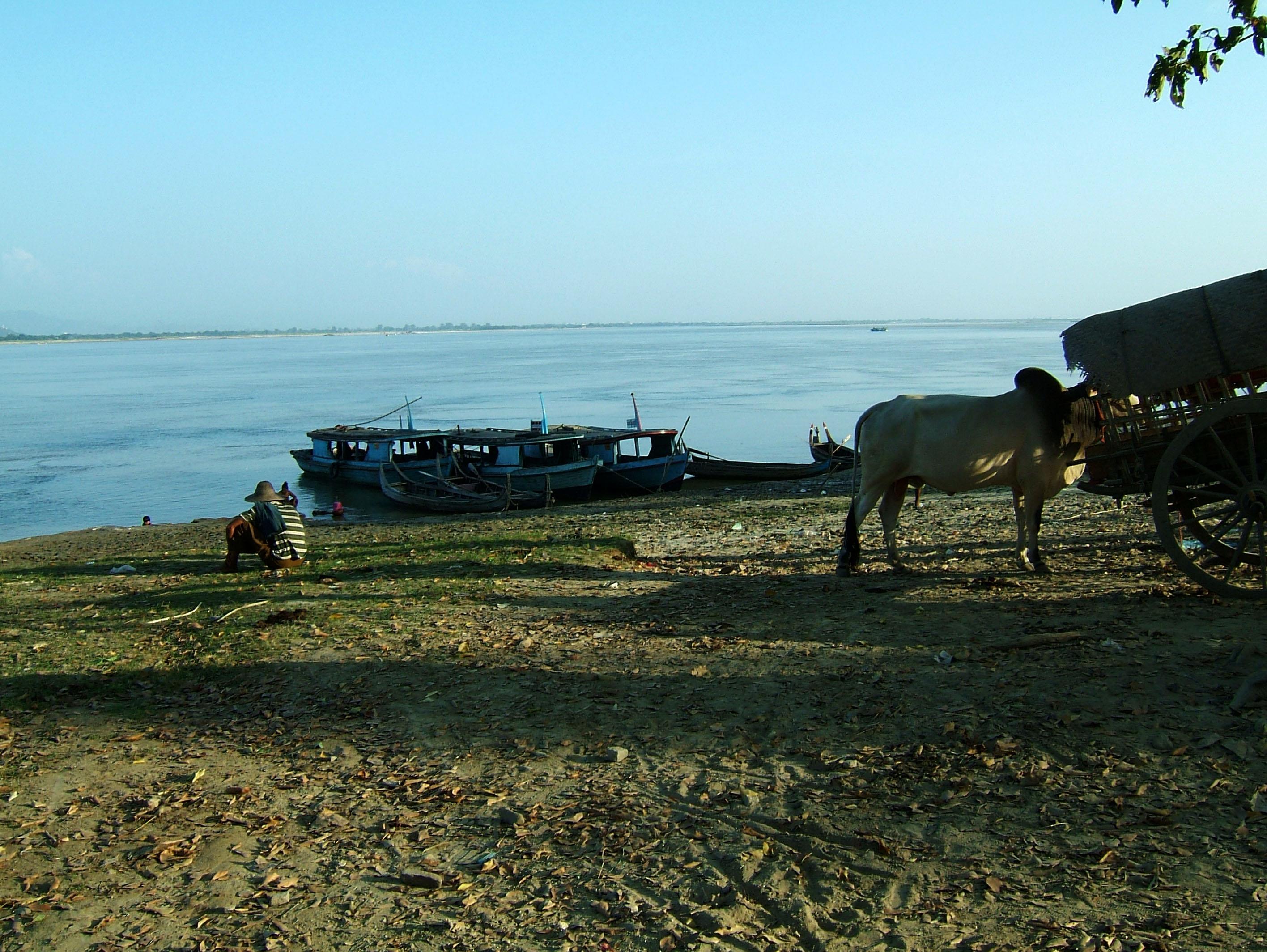Ayeyarwaddy river scenes Mingun area Nov 2004 09