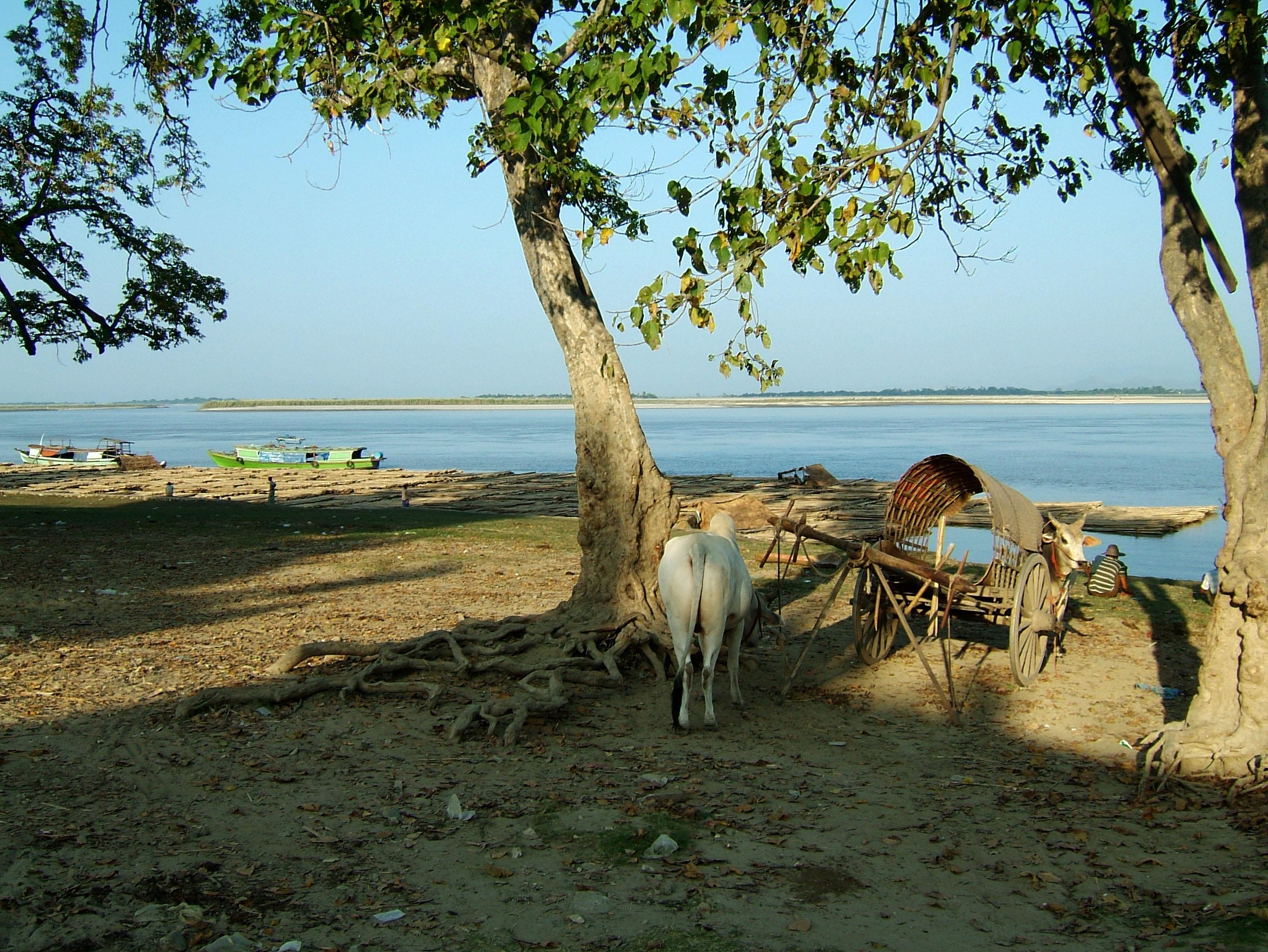 Ayeyarwaddy river scenes Mingun area Nov 2004 10