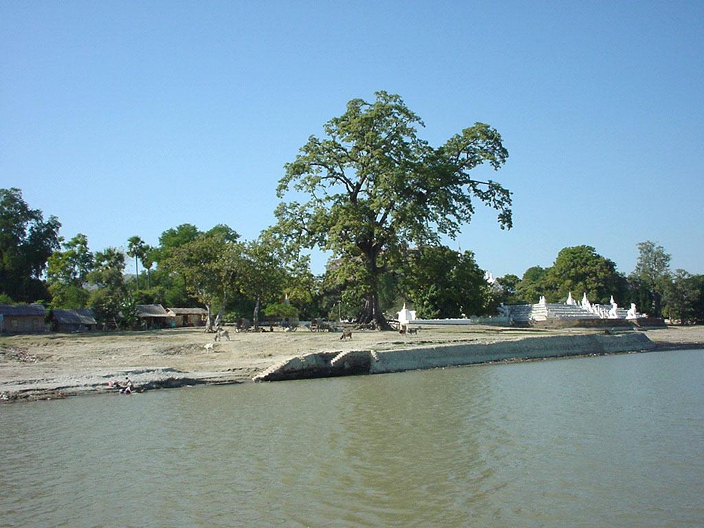Mandalay to Mingun and back along Ayeyarwaddy river Dec 2000 15