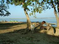Asisbiz Ayeyarwaddy river scenes Mingun area Nov 2004 10