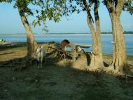 Asisbiz Ayeyarwaddy river scenes Mingun area Nov 2004 11