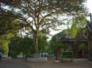 Asisbiz Pyin Oo Lwin main monastery Dec 2000 05