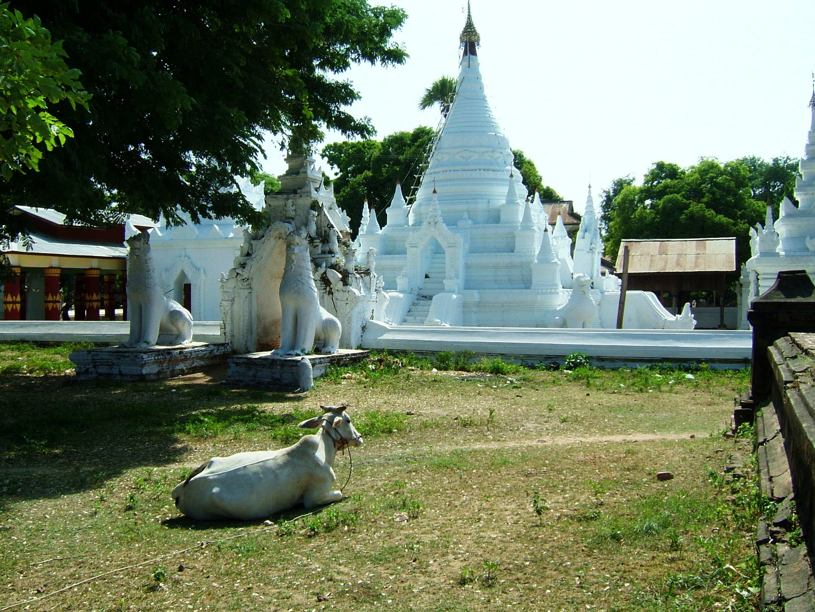 Myanmar Sagaing numerous pagodas Nov 2004 04