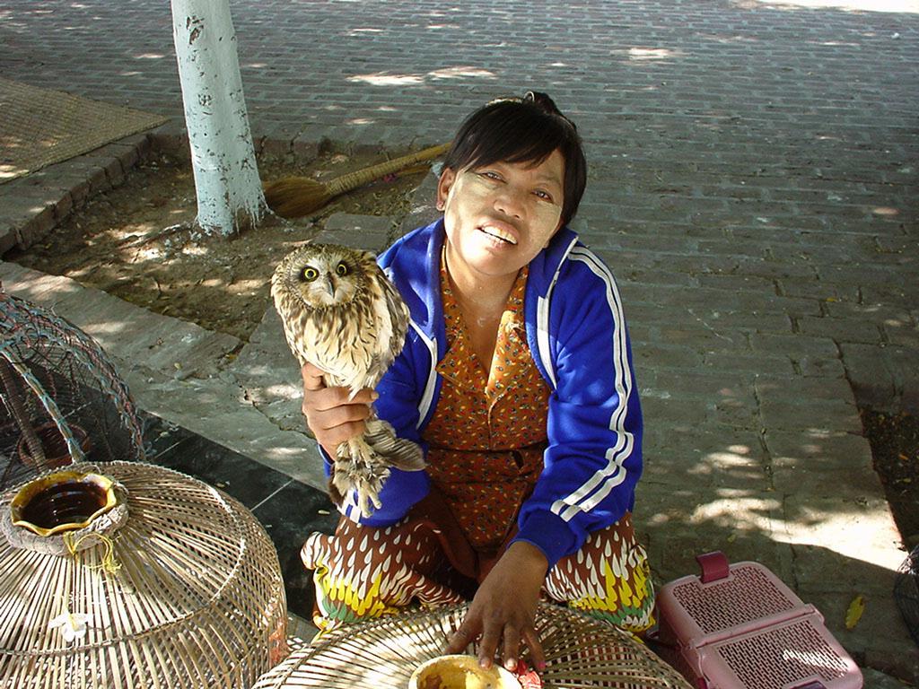 Sagaing Kaunghmudaw Paya Dec 2000 07