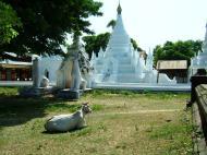 Asisbiz Myanmar Sagaing numerous pagodas Nov 2004 04