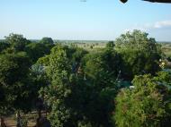 Asisbiz Thanboddhay paya Tower views Monywa Sagaing Myanmar Dec 2000 02