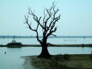 Asisbiz Myanmar Amarapura Mandalay Thaungthaman lake Nov 2004 10