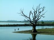 Asisbiz Myanmar Amarapura Mandalay Thaungthaman lake Nov 2004 16
