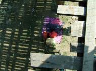 Asisbiz U Beins bridge Amarapura Mandalay Myanmar Nov 2004 08