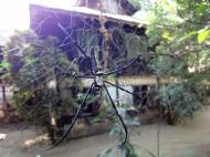 Asisbiz U To near Hle Guu monastery grounds 2010 08