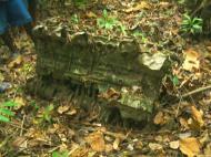 Asisbiz PNG Wreck Hunting P 39 Aircobra crash site Nov 2002 01