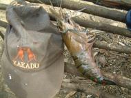Asisbiz PNG Wreck Hunting adventure tours Sep 2002 10