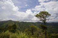 Asisbiz Benguet Nueva Vizcaya Rd mountain views of Bokod Benguet province Philippines Aug 2011 20