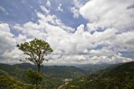 Asisbiz Benguet Nueva Vizcaya Rd mountain views of Bokod Benguet province Philippines Aug 2011 21
