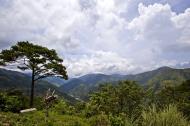 Asisbiz Benguet Nueva Vizcaya Rd mountain views of Bokod Benguet province Philippines Aug 2011 22