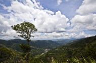 Asisbiz Benguet Nueva Vizcaya Rd mountain views of Bokod Benguet province Philippines Aug 2011 23