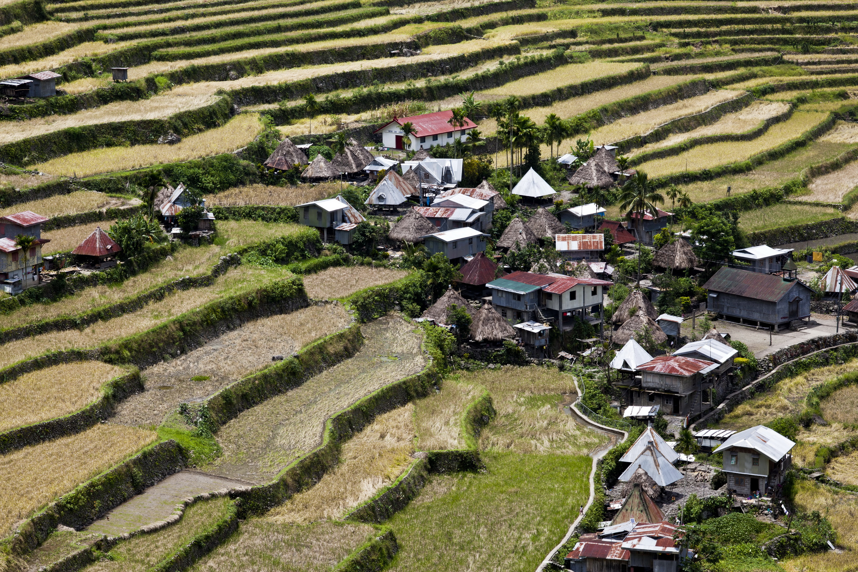Banaue batad rice terraces ifugao province philippines aug for Terrace design in philippines