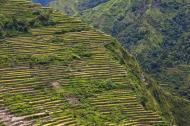 Asisbiz Banaue Batad Rice Terraces Ifugao Province Philippines Aug 2011 11