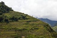 Asisbiz Banaue Batad Rice Terraces Ifugao Province Philippines Aug 2011 20