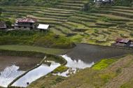 Asisbiz Banaue Batad Rice Terraces Ifugao Province Philippines Aug 2011 22
