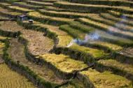 Asisbiz Banaue Batad Rice Terraces Ifugao Province Philippines Aug 2011 23