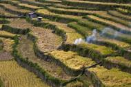Asisbiz Banaue Batad Rice Terraces Ifugao Province Philippines Aug 2011 24