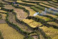 Asisbiz Banaue Batad Rice Terraces Ifugao Province Philippines Aug 2011 25
