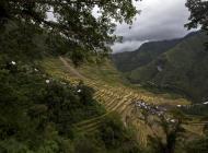 Asisbiz Banaue Batad Rice Terraces Ifugao Province Philippines Aug 2011 34