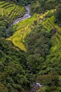 Asisbiz Banaue Mayoyao Aguinaldo Potia Ramon Rd scenic views Aug 2011 23