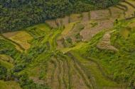 Asisbiz Banaue Mayoyao Aguinaldo Potia Ramon Rd scenic views Aug 2011 38