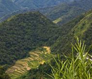 Asisbiz Banaue Mayoyao Aguinaldo Potia Ramon Rd scenic views Aug 2011 50