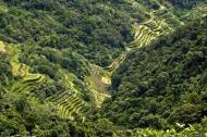 Asisbiz Banaue Mayoyao Aguinaldo Potia Ramon Rd scenic views Aug 2011 57