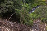Asisbiz Banaue Mayoyao Aguinaldo Potia Ramon Rd soil erosion damage Aug 2011 05