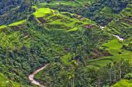 Asisbiz Banaue Rice Terraces Ifugao Province Philippines Aug 2011 06