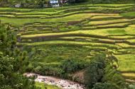 Asisbiz Banaue Rice Terraces Ifugao Province Philippines Aug 2011 18