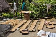 Asisbiz Banaue drying harvested rice Batad Rice Terraces Ifugao Province Philippines Aug 2011 02