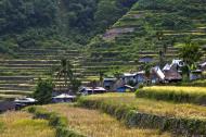 Asisbiz Banaue village houses Batad Rice Terraces Ifugao Province Philippines Aug 2011 05