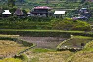 Asisbiz Banaue village houses Batad Rice Terraces Ifugao Province Philippines Aug 2011 06