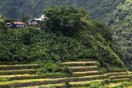 Asisbiz Banaue village houses Batad Rice Terraces Ifugao Province Philippines Aug 2011 10