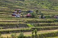 Asisbiz Banaue village houses Batad Rice Terraces Ifugao Province Philippines Aug 2011 11
