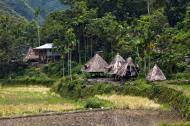 Asisbiz Banaue village houses Batad Rice Terraces Ifugao Province Philippines Aug 2011 12