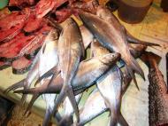 Asisbiz Calapan markets are open most days Oriental Mindoro Philippines Jan 2006 01