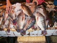 Asisbiz Calapan markets are open most days Oriental Mindoro Philippines Jan 2006 02