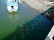 Asisbiz Kids diving of Naujan Estrella bridge Oriental Mindoro Philippines Feb 2006 31
